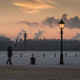 Panorama of St. Petersburg Royalty Free Stock Photography