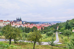 Panorama of the St. Vitus Cathedral in Prague at day in the blue sky. Royalty Free Stock Images