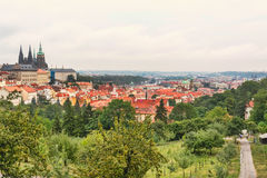 Panorama of the St. Vitus Cathedral in Prague at day in the summer Stock Photography