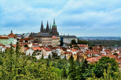 Panorama of the St. Vitus Cathedral in Prague at day in the summer Stock Image