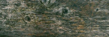 Panorama stara drewniana tekstura z pęknięciami i kępkami Uwalnia przestrzeń dla teksta Duży rozmiar obraz royalty free