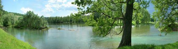 Panorama staw z turkusu lasem i wodą Fotografia Royalty Free