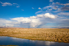 Panorama of the steppe Royalty Free Stock Image