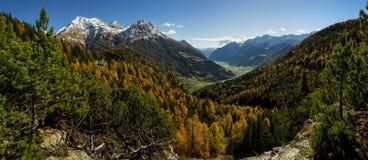 Panorama suíço dos cumes Imagem de Stock