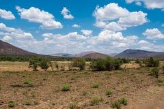 Panorama Sudafrica della savanna con molto più parole fotografia stock