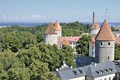 Panorama sulla vecchia città di Tallin Immagini Stock Libere da Diritti