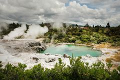 Panorama of Sulphur and silica geothermal deposits, blue lake and Pohutu geyser. Yellow sulphur geothermal deposits, blue lake  and Pohutu Geyser. Rotorua stock images