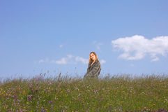 Panorama of summer field Royalty Free Stock Photo