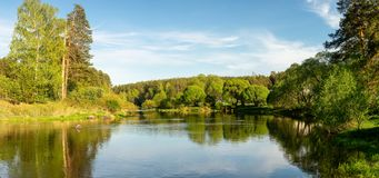 Panorama of the summer landscape on the Bank of the Ural river with forest, Russia,. August royalty free stock image