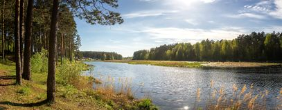 Panorama of the summer landscape on the Bank of the Ural river with forest, Russia,. August royalty free stock images