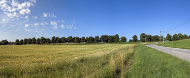 Panorama of summer landscape Stock Photography