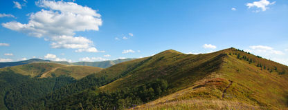 Panorama of the summer landscape in the Carpathian mountain Stock Images