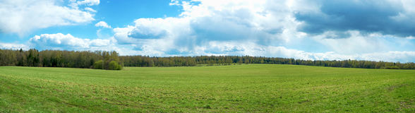 Panorama of summer landscape Stock Photo
