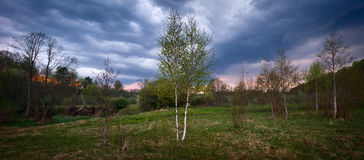Panorama summer meadow and forest before a storm Stock Photos