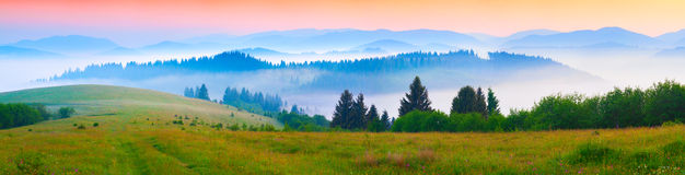 Panorama of the summer morning in the foggy Carpathian mountains Royalty Free Stock Photography