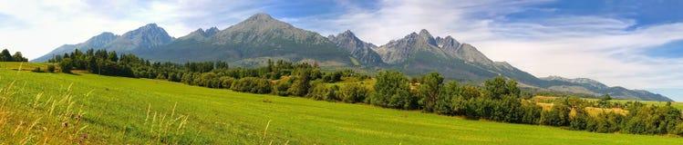 Panorama. Summer mountain landscape. Stock Photos