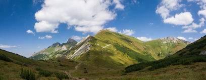 Panorama of summer mountain ridge Royalty Free Stock Images