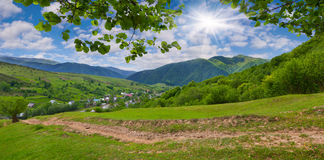 Panorama of the summer mountains Royalty Free Stock Photo