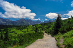 Panorama of summer mountains under the clouds Royalty Free Stock Image