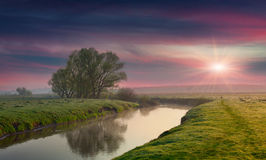 Panorama of summer sunrise Stock Photography