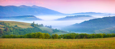 Panorama of the sunny summer morning in the foggy mountains Stock Photos
