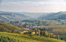 Sunset over Langhe vineyards. Color image stock photography