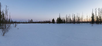 Panorama of a sunset in the Siberia Stock Photography