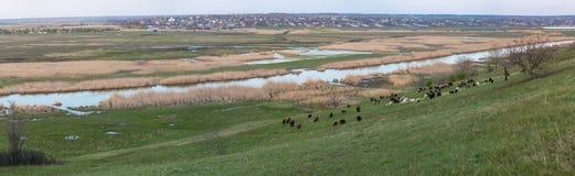 Panorama sur le Mius River Valley avec des vues de village de Nikolaevka Image stock