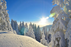 Panorama surpreendente do inverno Fotografia de Stock Royalty Free