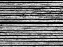 Panorama- svartvitt för landskap fotografering för bildbyråer