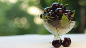 Panorama, sweet cherry in a glass vase, fruit in a vase, with beautiful blurred garden trees. stock video