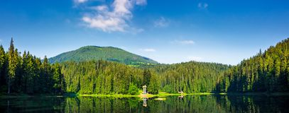 Panorama of Synevyr lake on summer morning. Gorgeous scenery with spruce forest reflecting on a water surface. some cloud formation on a blue sky over the Royalty Free Stock Photos