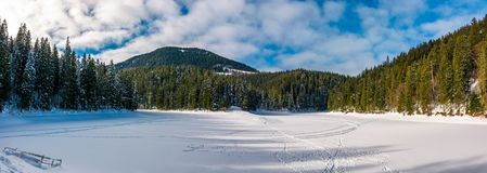 Panorama of Synevyr lake in winter. Panorama of ice covered Synevyr lake in winter. Gorgeous location in forested Carpathian mountains Royalty Free Stock Photography