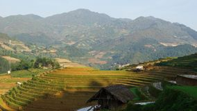 A panorama taken in MUCANGCHAI district of YENBAI province, Viet Nam. To create terraces like this, farmers have to work very hard stock images