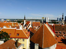 Panorama of Tallinn City, Estonia. Panorama of Estonias Capital City Tallinn from the high Point Royalty Free Stock Image