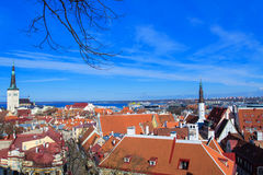 Panorama of the Tallinn Old Town, Estonia. Stock Photos