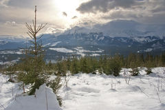 The Panorama of Tatra Mountains. Winter morning at the mountains Stock Images