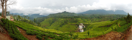 The panorama of tea plantations and waterfall Stock Photos