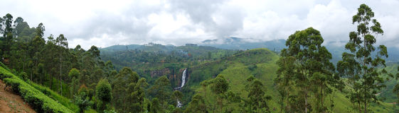 The panorama of tea plantations and waterfall Stock Image