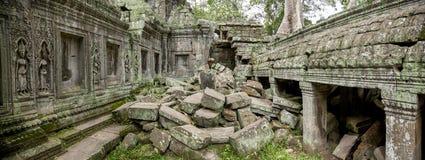 Panorama- tempel Kambodja för ta Prohm Fotografering för Bildbyråer