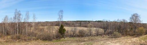 Panorama temprano de la primavera Fotografía de archivo