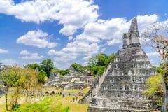 Panorama of Tikal Maya temple ruins royalty free stock photography