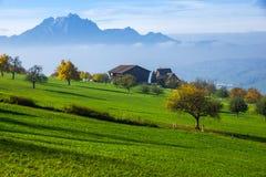 Panorama étonnant de bâti Pilatus et de luzerne de lac couverte de grenouille, Alpes Photo stock