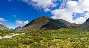Panorama Tourists go on the green field of mountain valley. Blue sky Royalty Free Stock Images