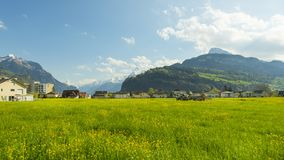 Small towns in Europe. Brunnen. Switzerland. Panorama of the town Brunnen. Traditional Alpine meadows with luscious bright grass.  Tractor fertilizes the field Royalty Free Stock Photos