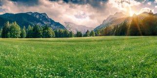 Panorama of Triglav mountain range Royalty Free Stock Photography