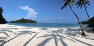 Panorama of the tropical beach with coconut shadow on the white stock photography