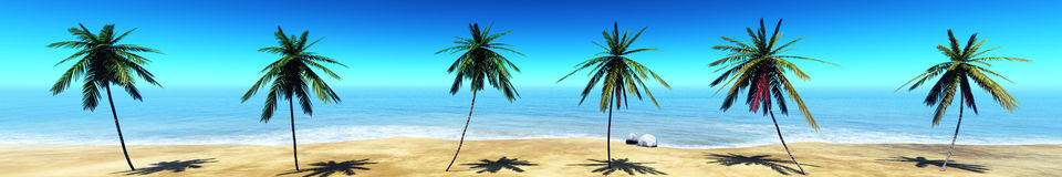 Panorama of tropical beach, palm trees on the beach, seascape Royalty Free Stock Photos