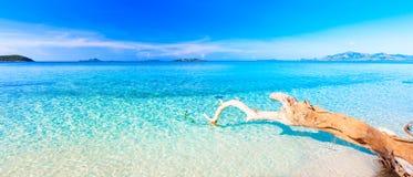 Panorama tropical da praia Fotos de Stock Royalty Free
