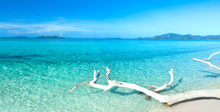 Panorama tropical de la playa Imagenes de archivo